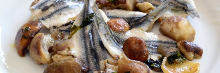The Festival of Anchovies